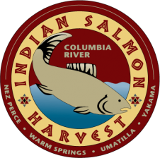 Salmon Marketing logo