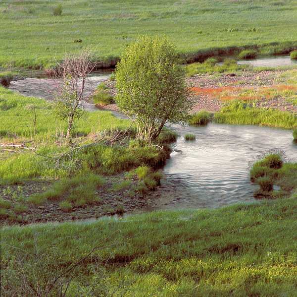 Warm Springs - Oxbow Ranch