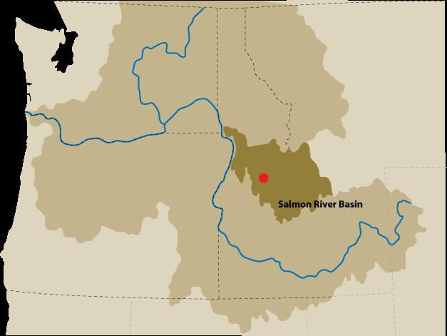 Salmon River Basin