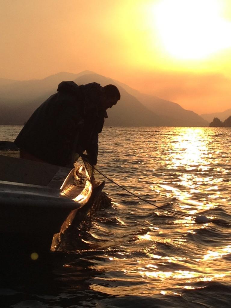 Columbia River Salmon Fishing at Sunrise