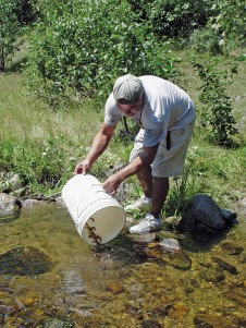 Nez Perce Fisheries technician Brett Bisbee releasing coho smolts into Meadow Creek at McComas Meadows in the Nez Perce National Forest.