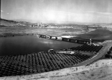 The Lewiston Dam shunted logs to the Potlatch Mill. The dam was removed in 1972 to make way for Lower Granite Dam's reservoir which would have flooded it. Photo courtesy Nez Perce County Historical Society, Lewiston, Idaho. Photo 86-43-17.
