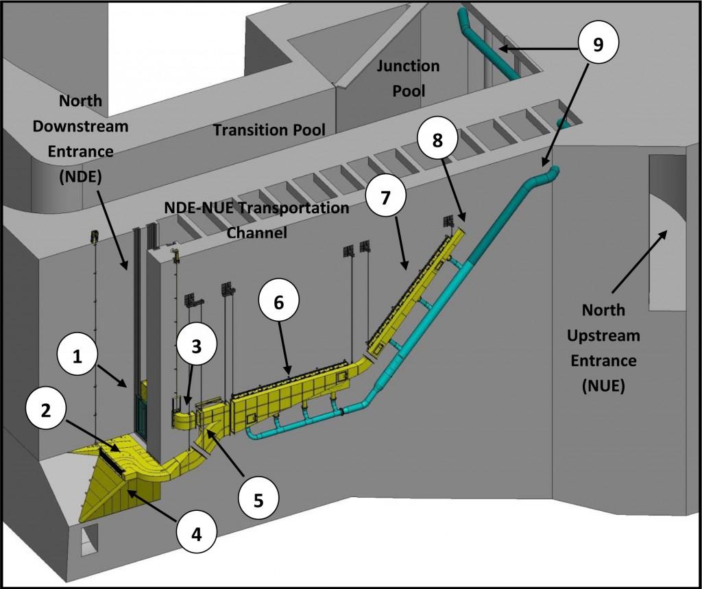 Bonneville Dam Washington Shore Fish Ladder Lamprey Flume System