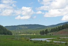 A protected creek system flows through the Warm Springs Tribe's Forest Ranch Project. Fencing to keep cattle out of the creek was funded through the PCSRF. This Middle Fork of John Day River parcel provides spawning habitat for up to 60% of returning spring chinook.