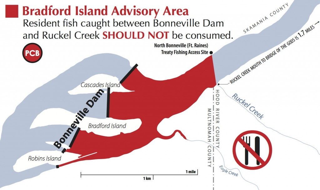 Bradford Island Fish Advisory Area