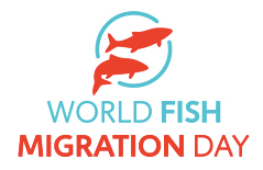 World Fish Migration Day logo