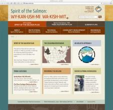 sots-website-screengrab