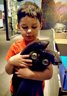 Elmer's grandson Henry FiveCrows holding lamprey models to scan at the new OMSI exhibit Roots of Wisdom.