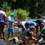 Joshua Hall and Zack Lamebull from Yakama Fisheries lead a macroinvertebrate activity to determine water quality.
