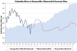 Columbia River at Bonneville: Observed & Forecast River Flow