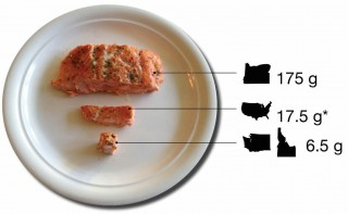 A portion of salmon equal to the daily fish consumption rate each state uses for its residents. The current daily amount for Washington and Idaho is about enough salmon to put on a cracker.